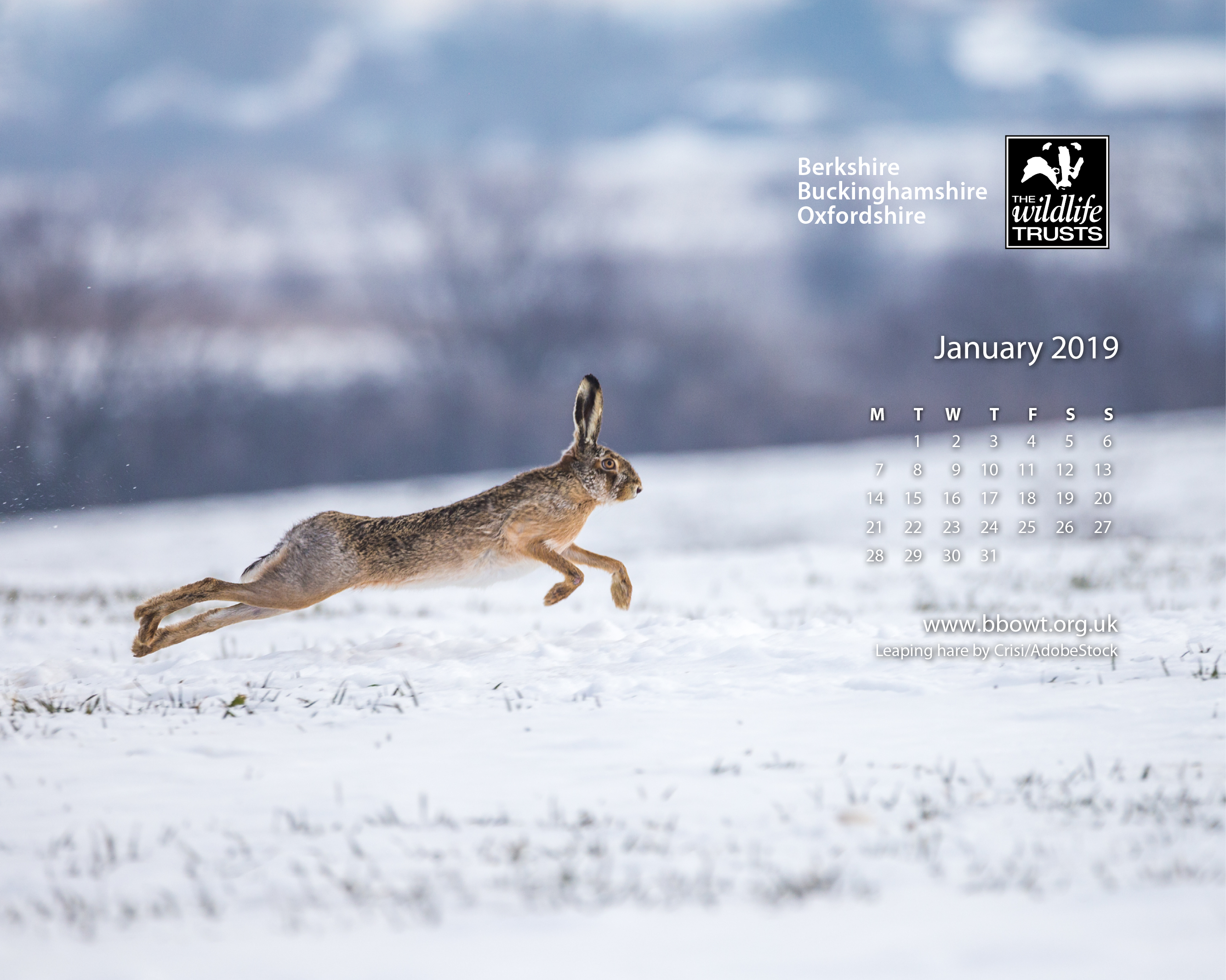 January wallpaper 1280 by 1024