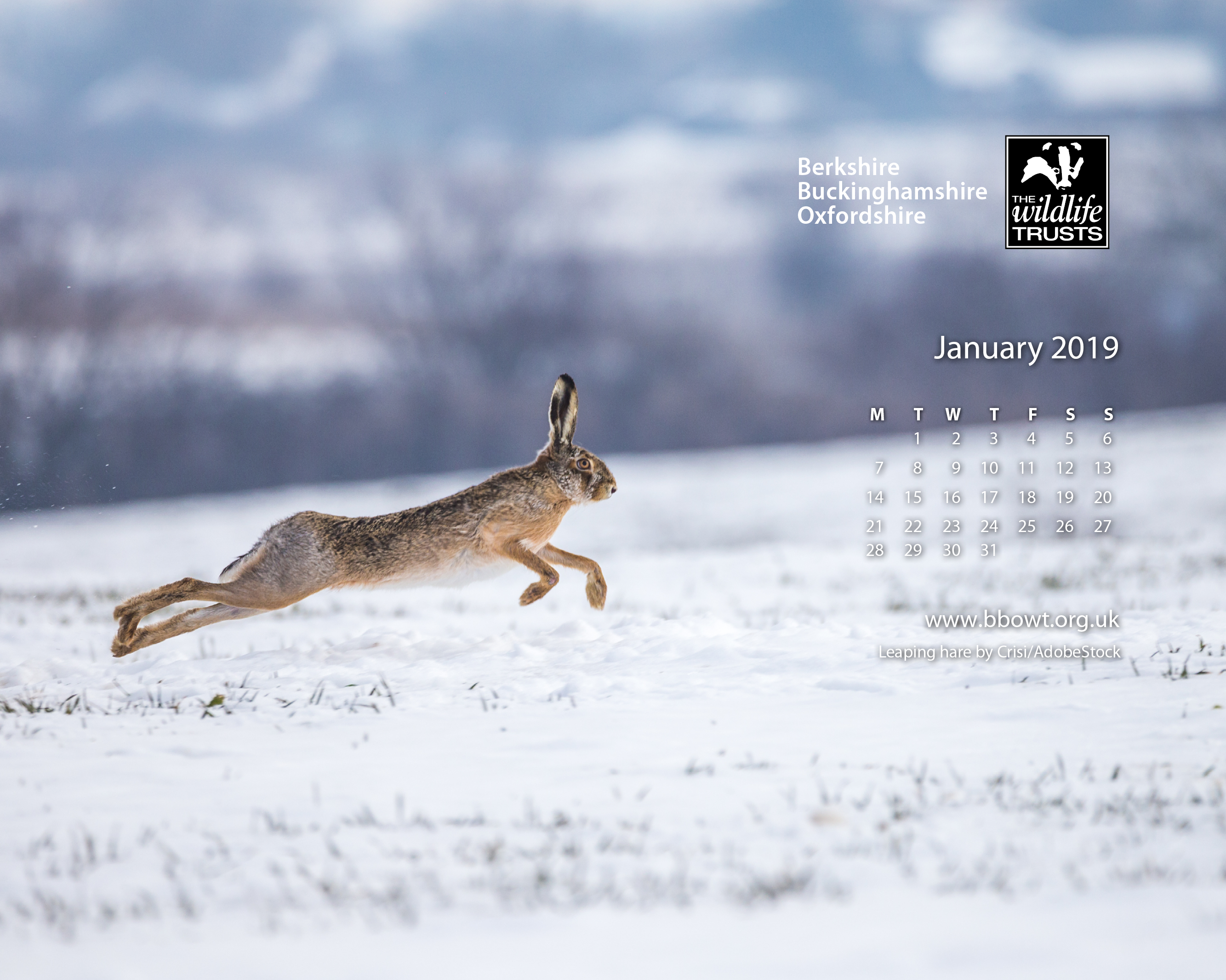 January wallpaper 1280 by 768