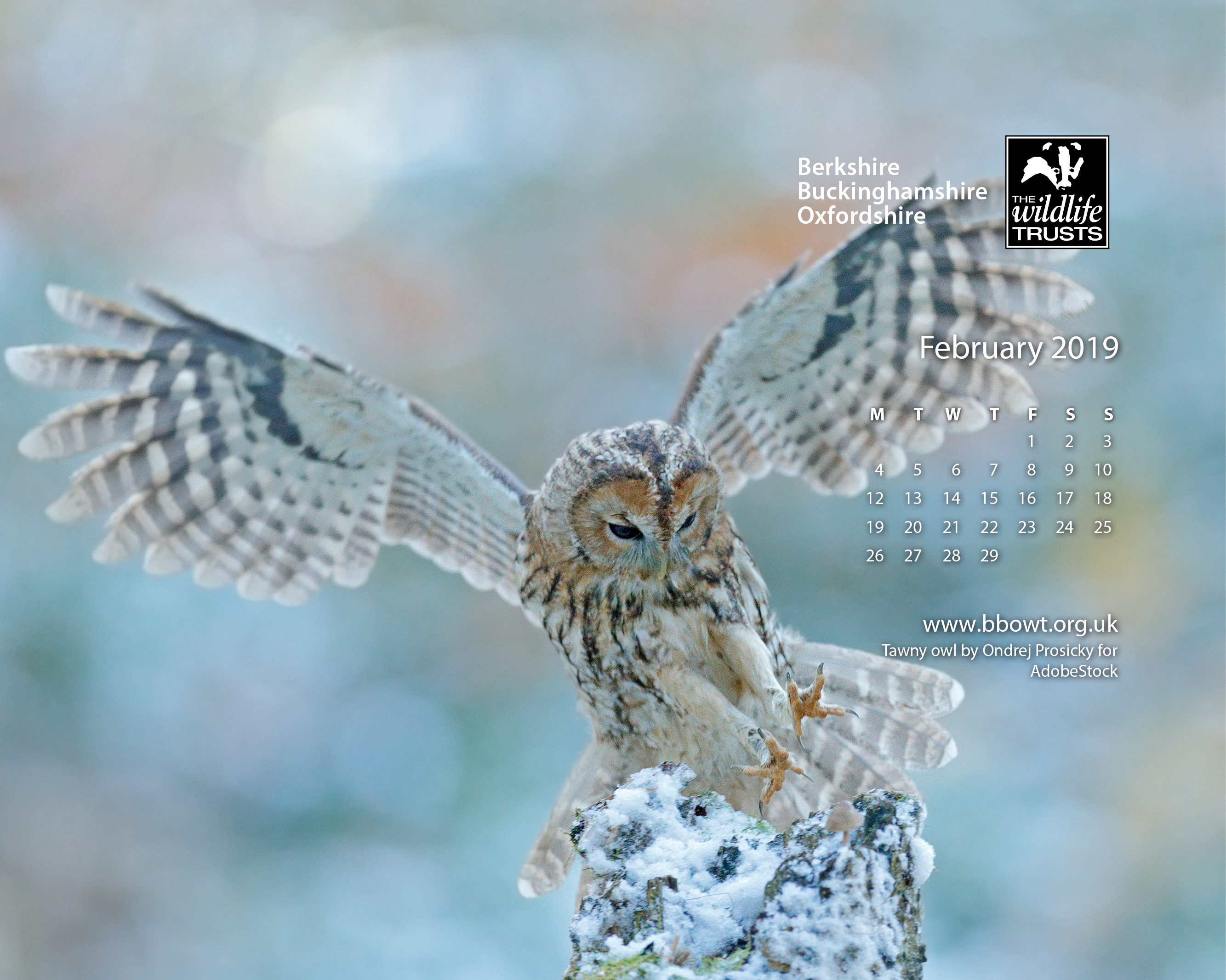 February wallpaper 1280 by 1024