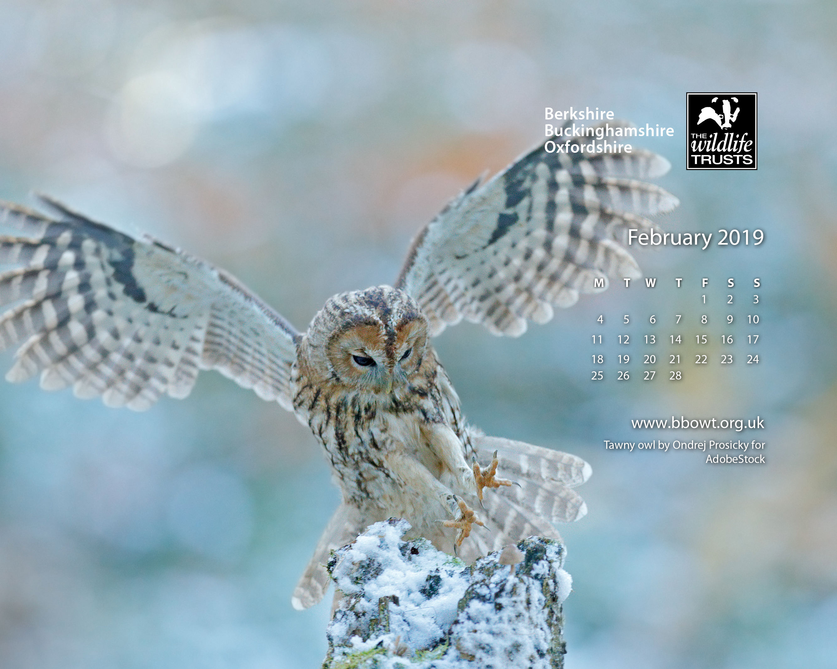 February wallpaper 1280 by 768