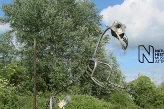 Dinosaur sculpture at Sutton Courtenay