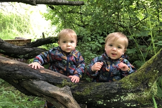 Twin toddlers behind a log