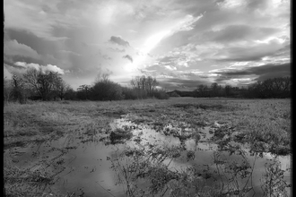 Cholsey Marsh in flood by Ed Munday