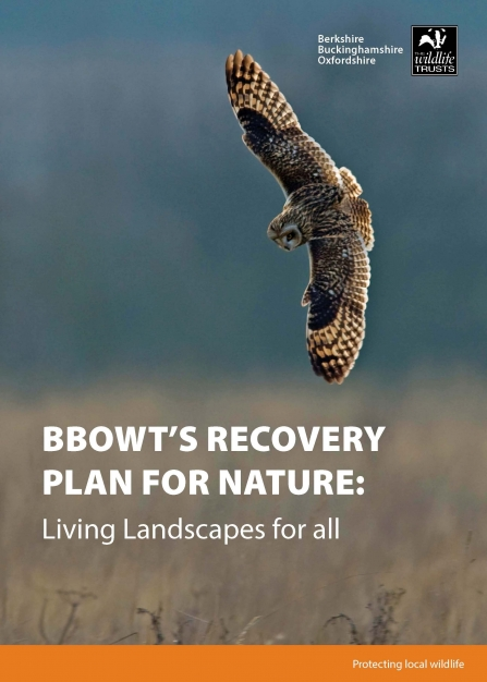 BBOWT's Recovery Plan for Nature