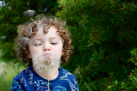 Boy with seedhead