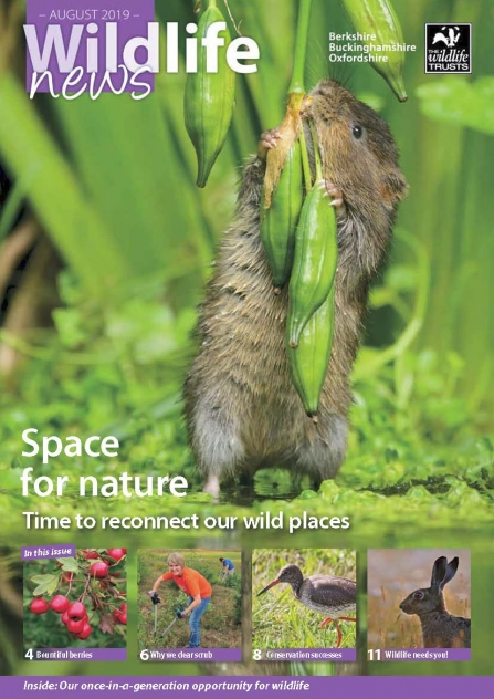 Cover of August 2019 Wildlife News magazine