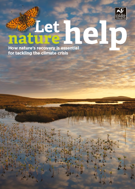Cover of let nature help publication