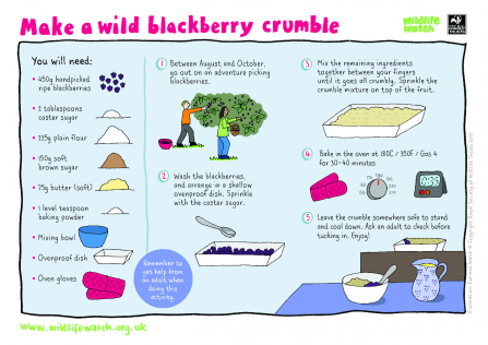 Blackberry crumble activity sheet