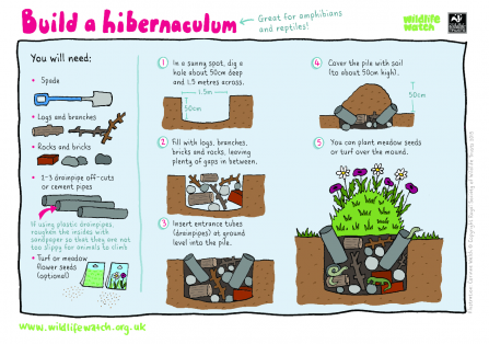 Hibernaculum activity sheet