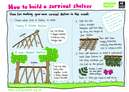 Survival shelter activity sheet