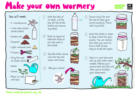 Wormery activity sheet