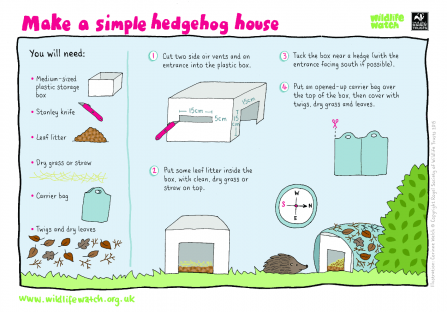 Hedgehog house activity sheet