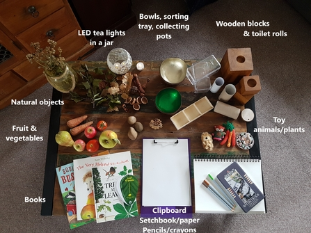 Items to use for autumn nature table