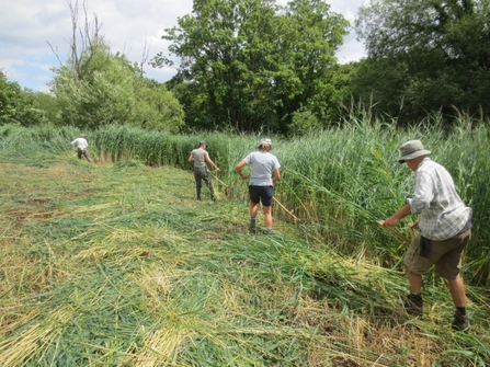 Volunteers scything at Chilswell Valley