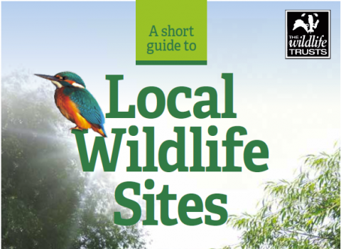 A Short Guide to Local Wildlife Sites